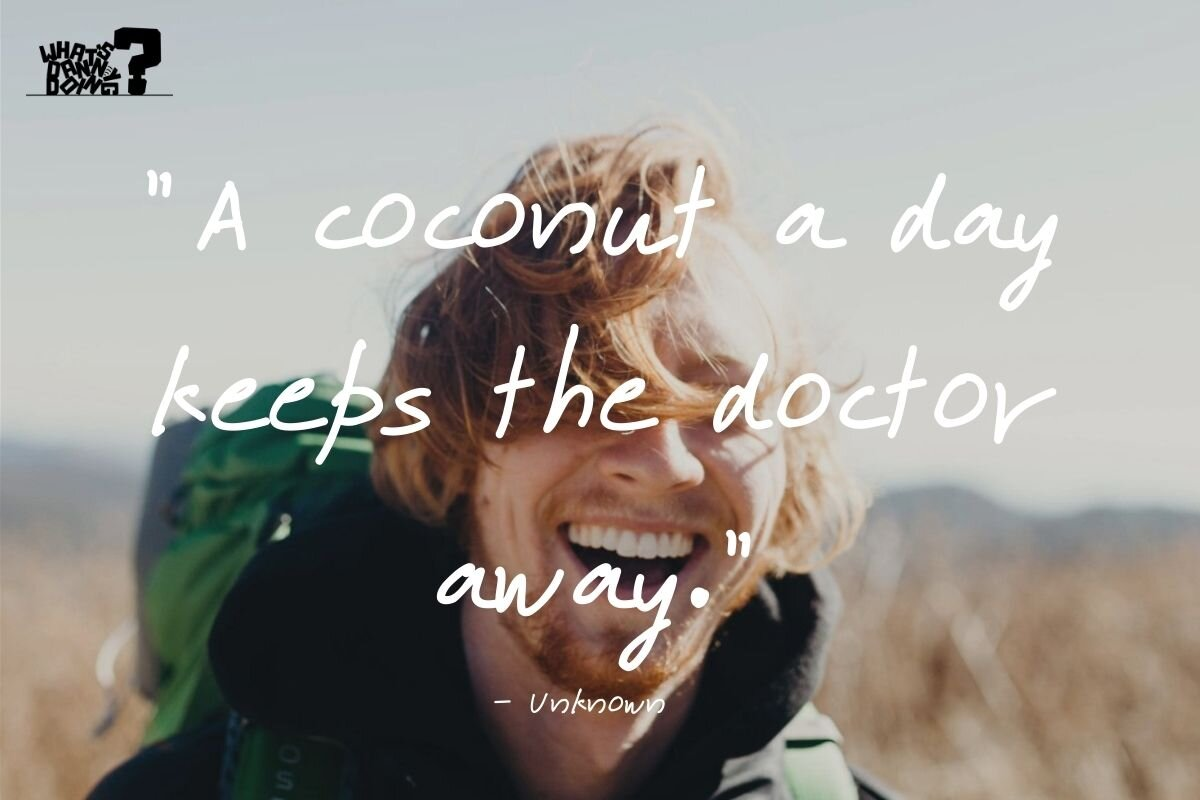 Funny vacation quotes can give you a giggle as well!