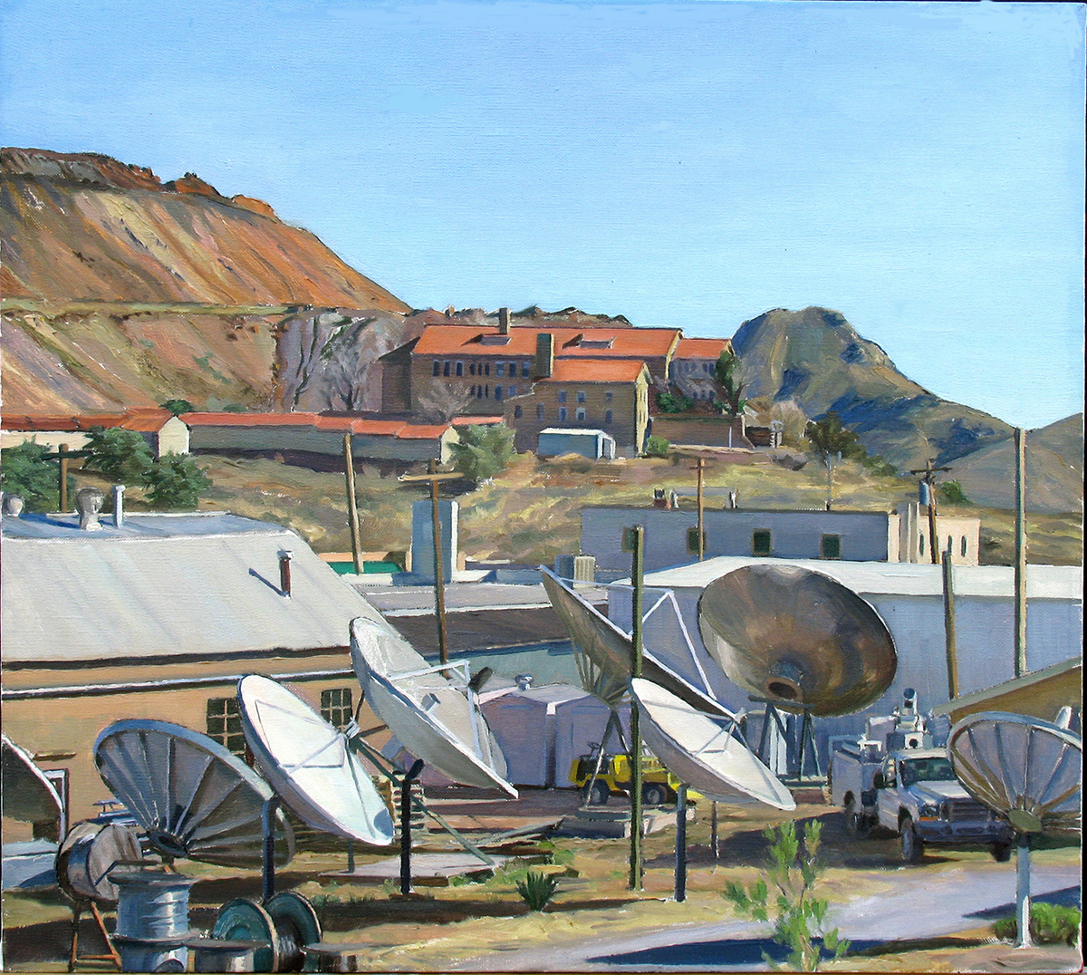 "ARIZONA DISCS oil on linen 18 x 20"" 2009"
