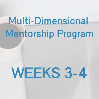 Multi-Dimensional Mentorship Program - WEEKS 3-4.jpg