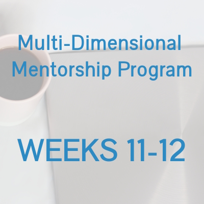 Multi-Dimensional Mentorship Program - WEEKS 11-12.jpg
