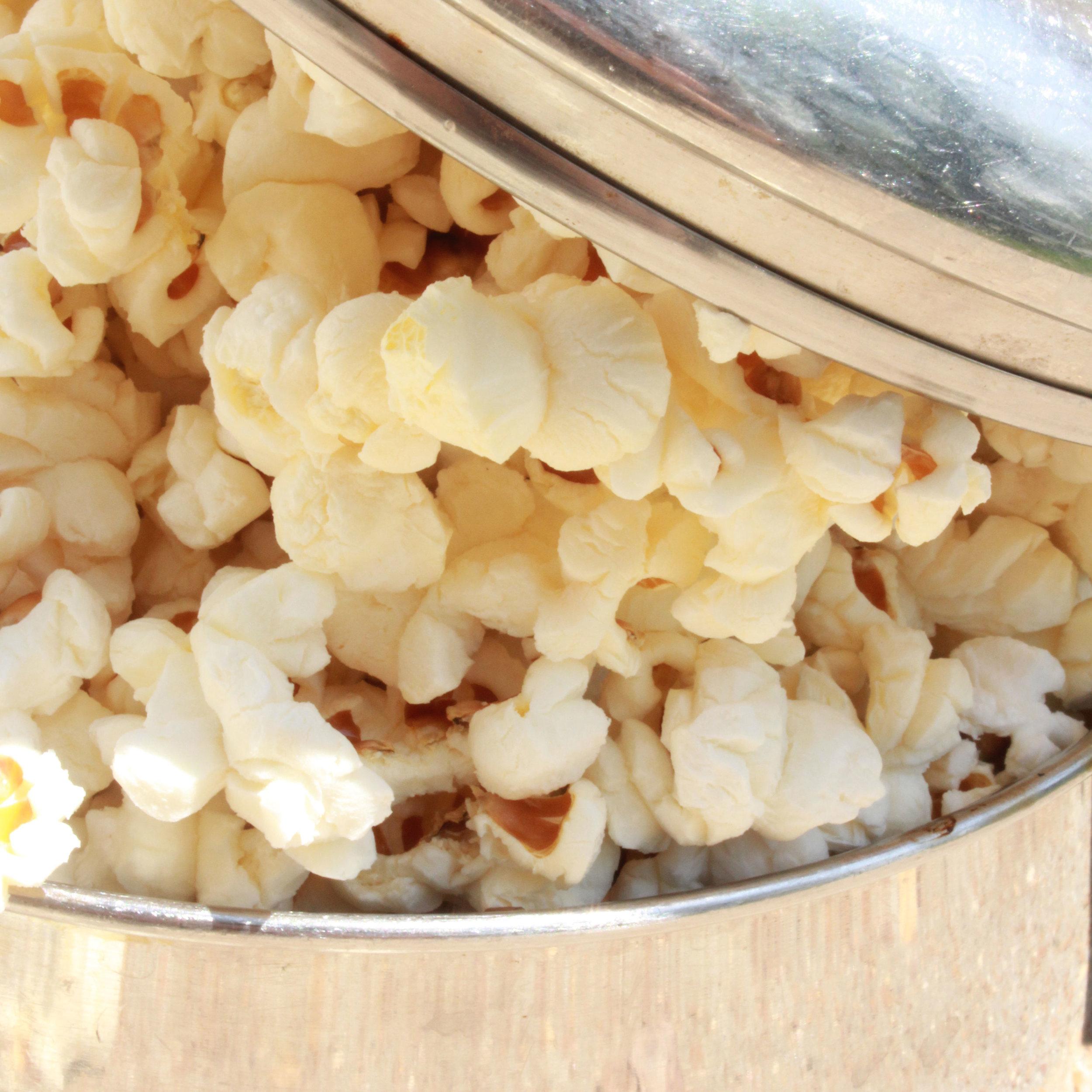 ella-and-ollie-heirloom-popcorn-st-louis-missouri-belleville-illinois-stovetop-square.jpg