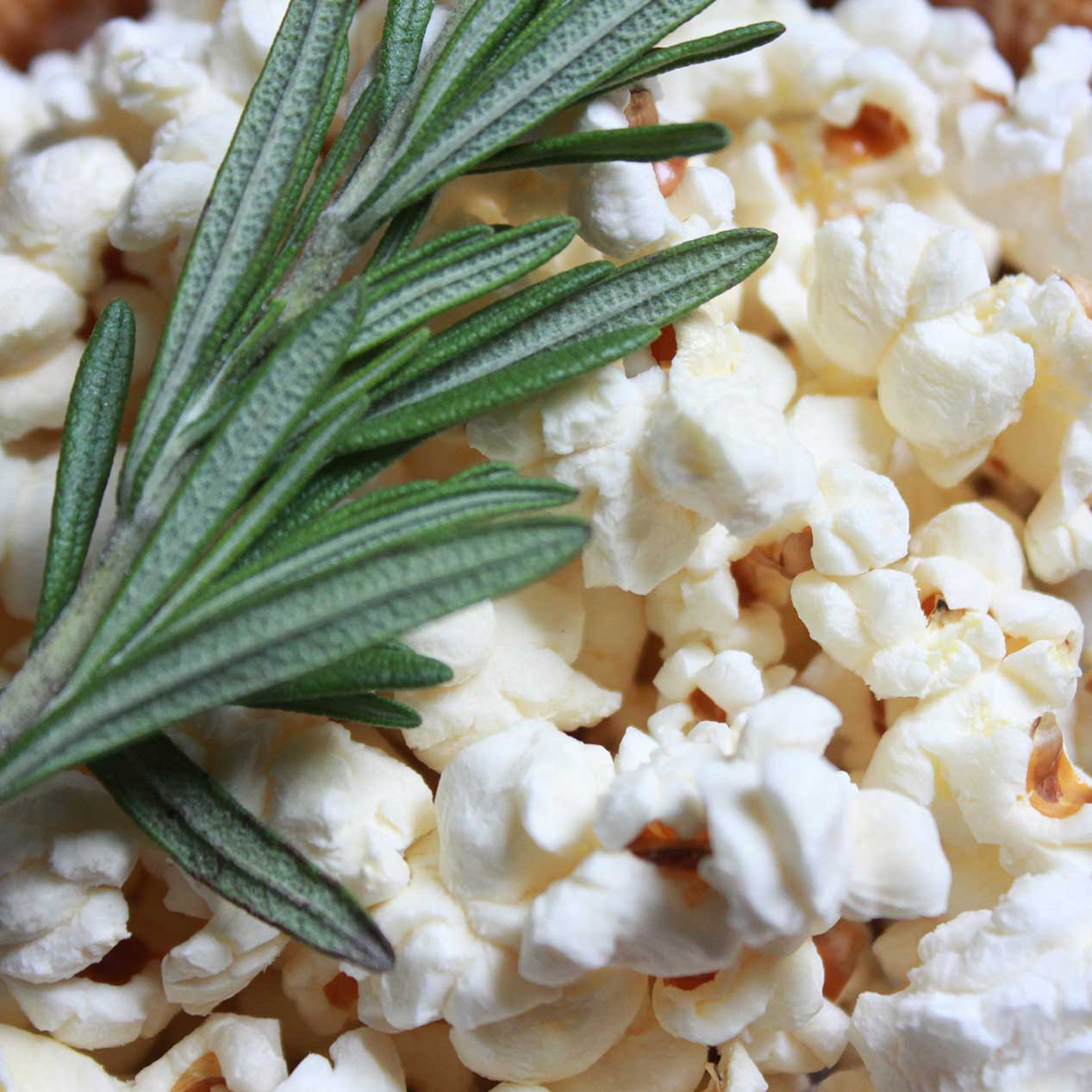 ella-and-ollie-heirloom-popcorn-st-louis-missouri-belleville-illinois-popcorn-wodden-bowl-square.jpg