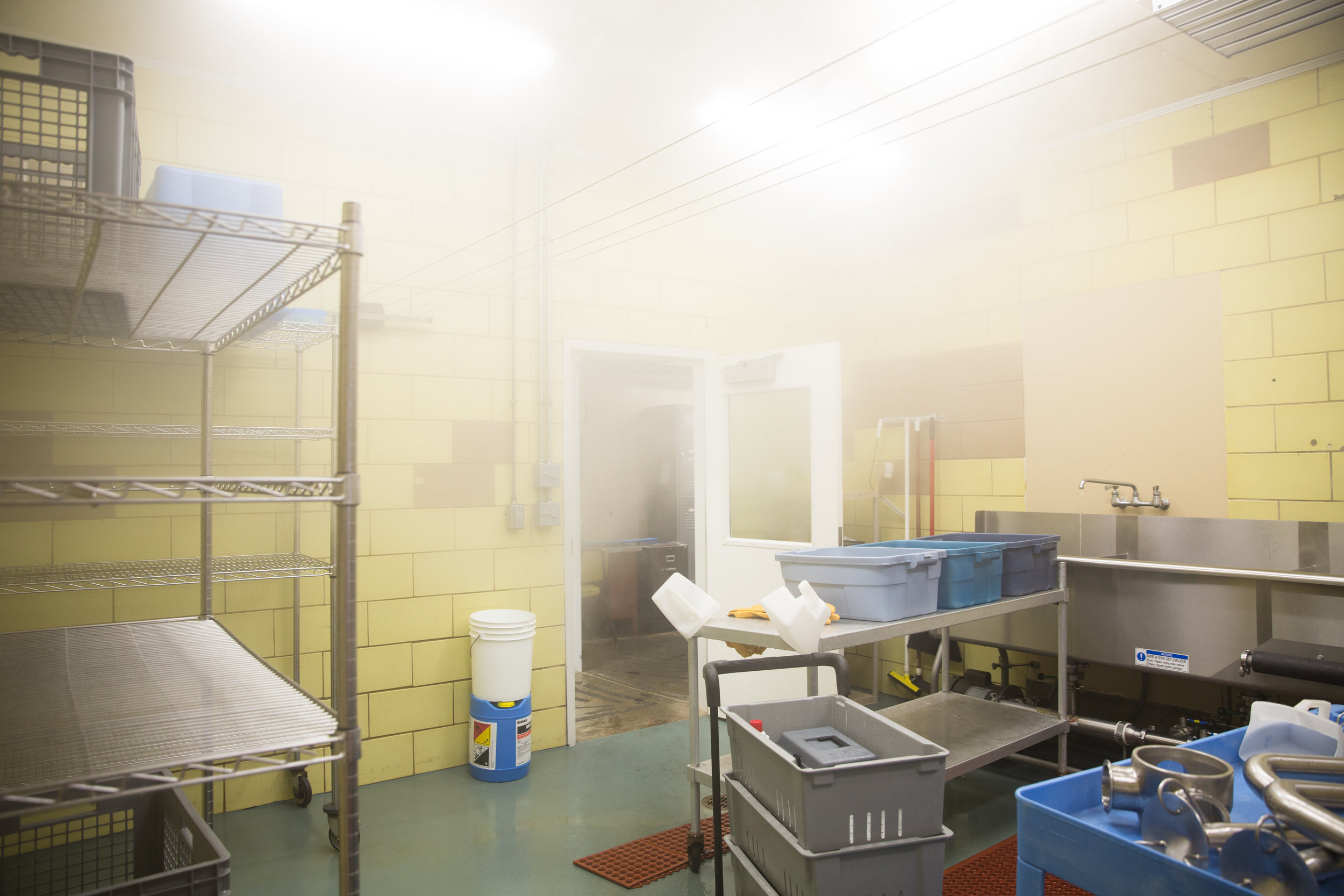 The wash room sits foggy on cheese making days. The cheese making process requires a moist environment.