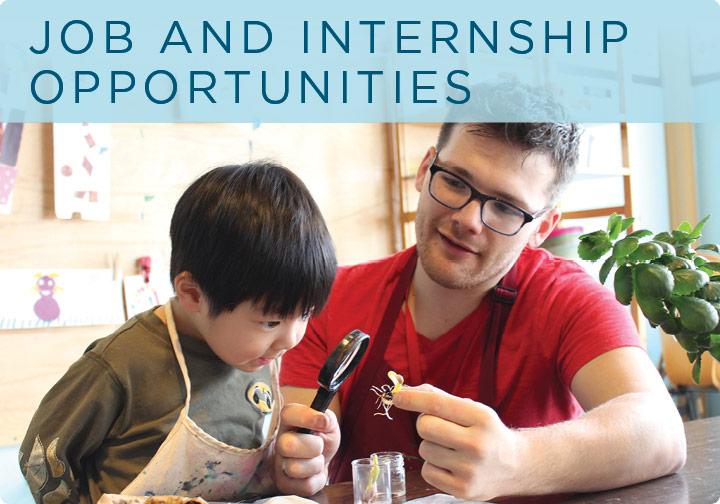 Job and Internship Opportunities