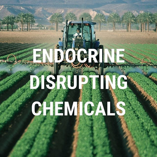 Endocrine-disrupting chemicals (EDCs) can interfere with the functions of hormones in our bodies and cause serious health effects... especially in developing children and pregnant women 🍼 Click the link in our bio for more information on the dangers of EDCs and how to protect your endocrine system!