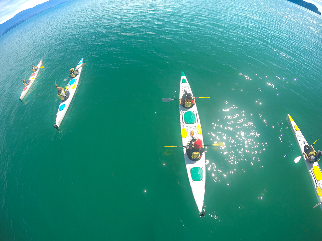 golden-bay-kayaks-guided-tours.jpg