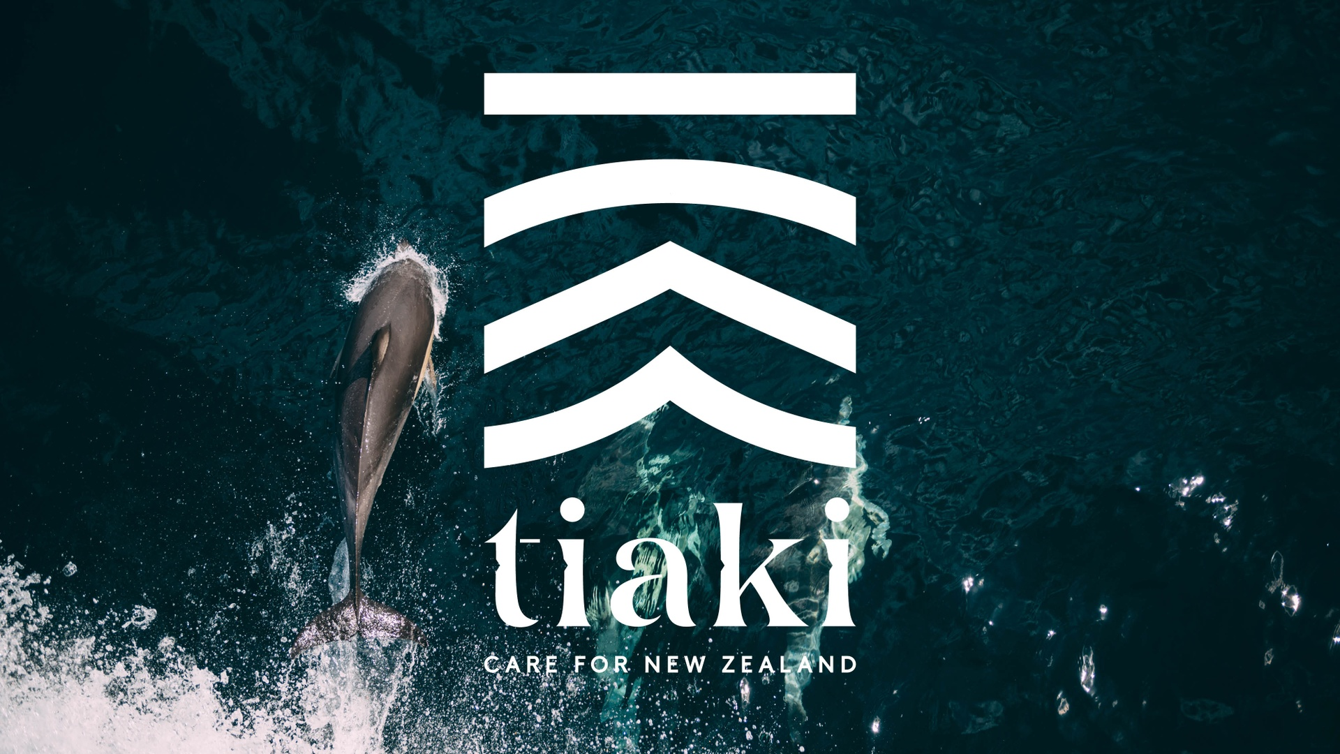 Tiaki Digital Screen 06.jpeg