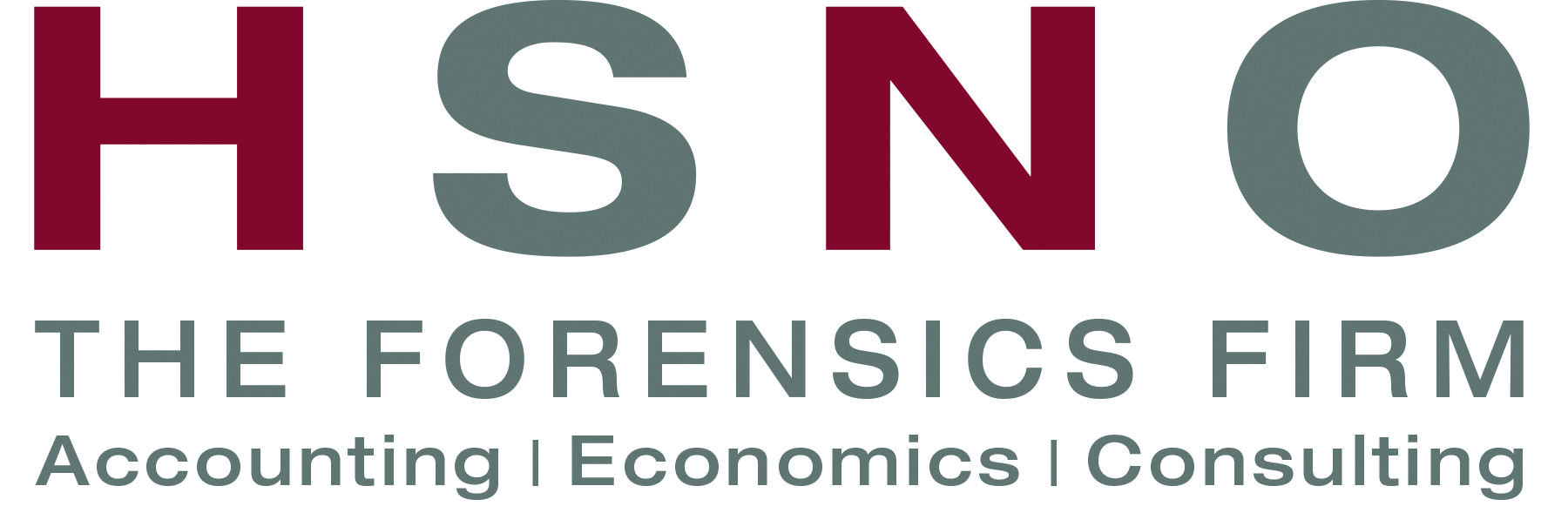 HSNO - The Forensics Accounting Firm