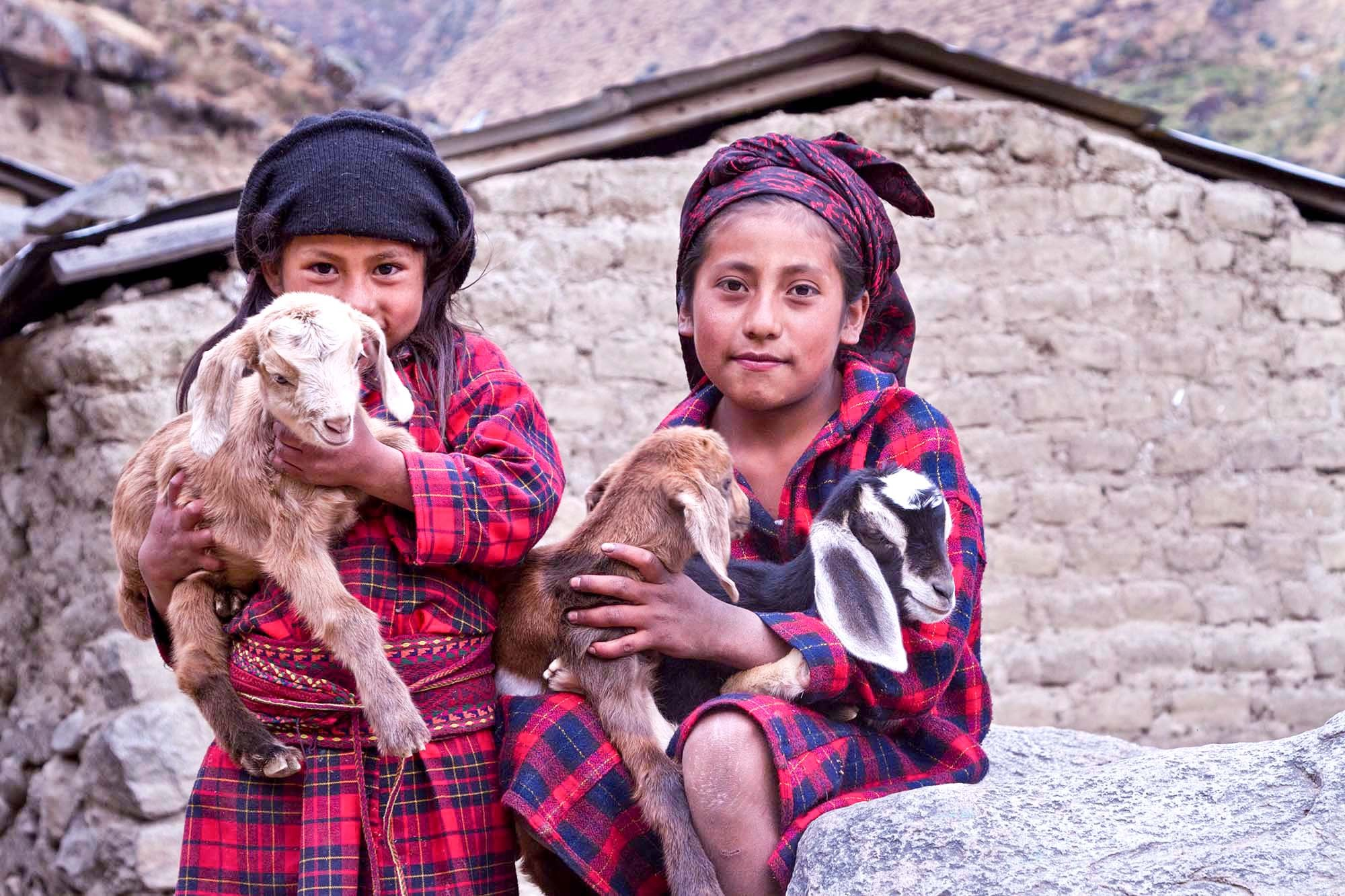 Children help with daily chores after school taking their herds to graze in the mountains.