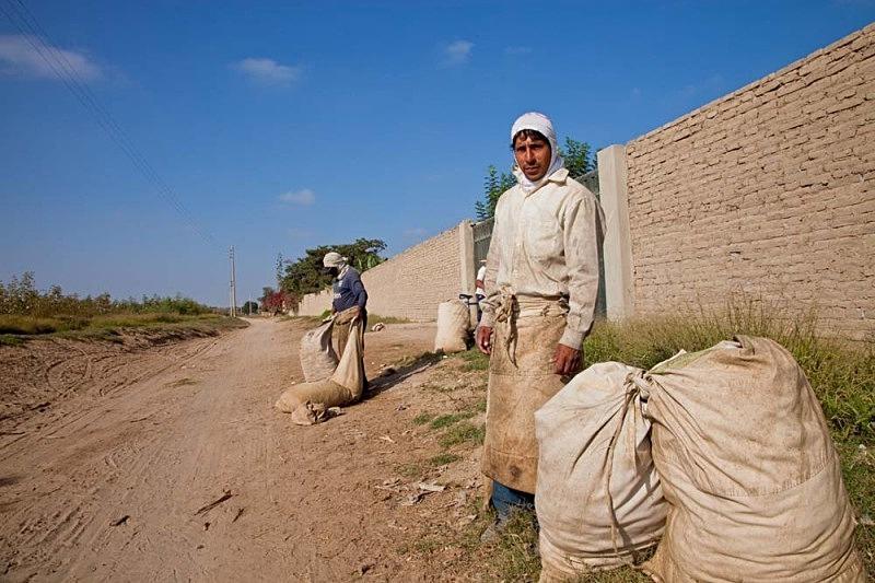 Chompira at the cotton fields, El Carmen 2011