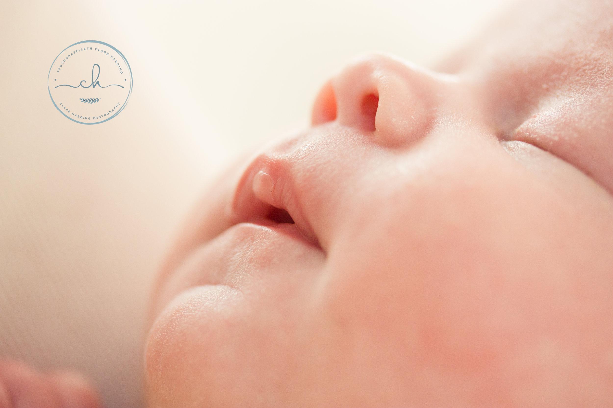 newborn photographer cardiff vale of glamorgan nose.jpg