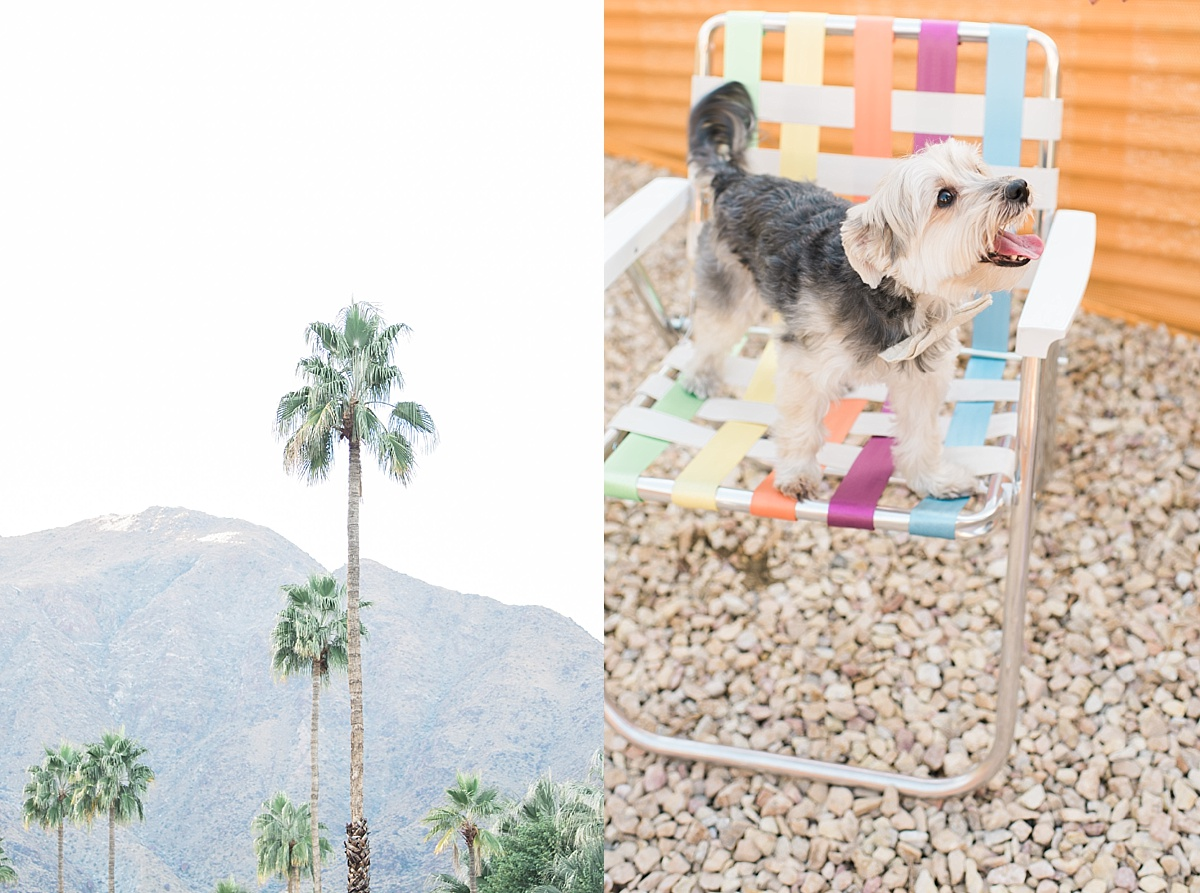 Palm-Springs-Engagement-Photographer-Tiff-Kenny-Carissa-Woo-Photography_0039.jpg