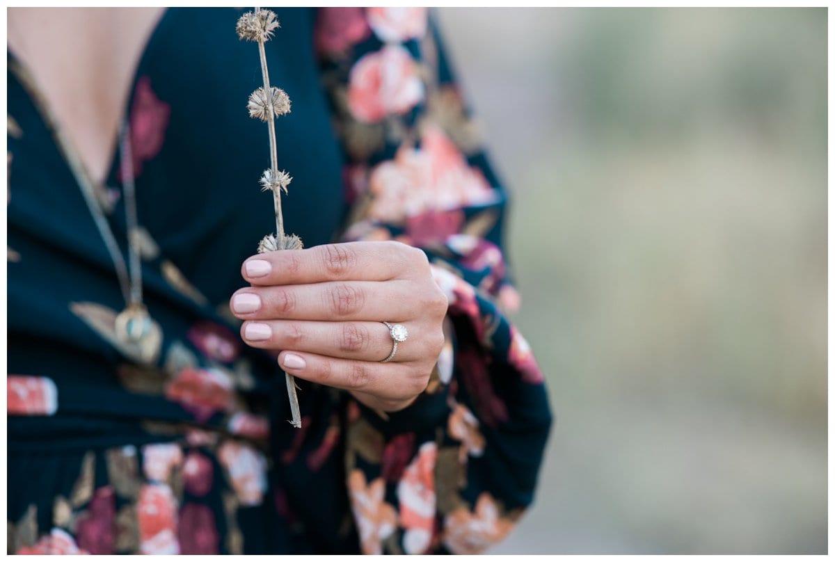 Vasquez-Rocks-Engagement-Carine-Ryan-Carissa-Woo-Photography_0020.jpg