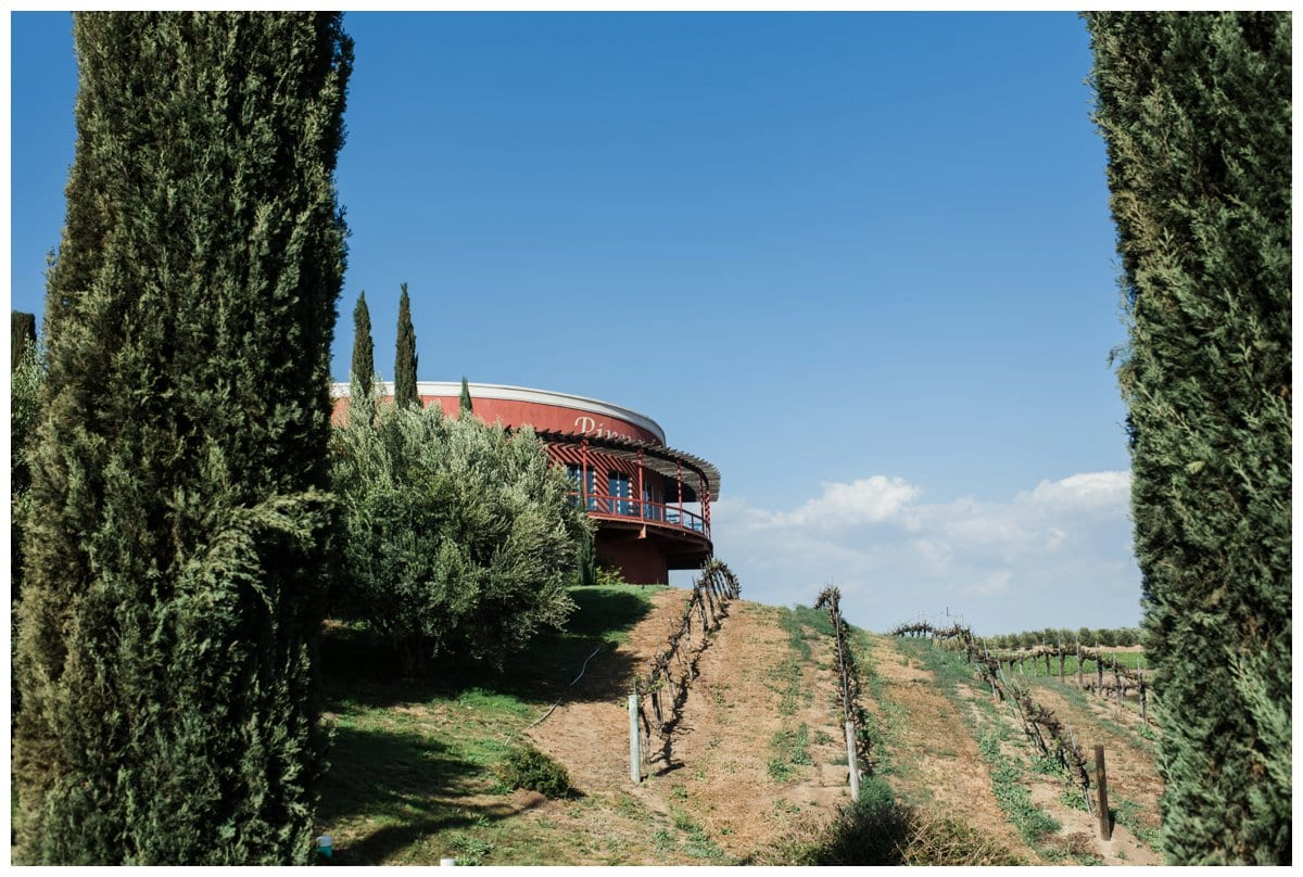 Falkner-Winery-Temecula-Carissa-Woo-Photography_0031.jpg