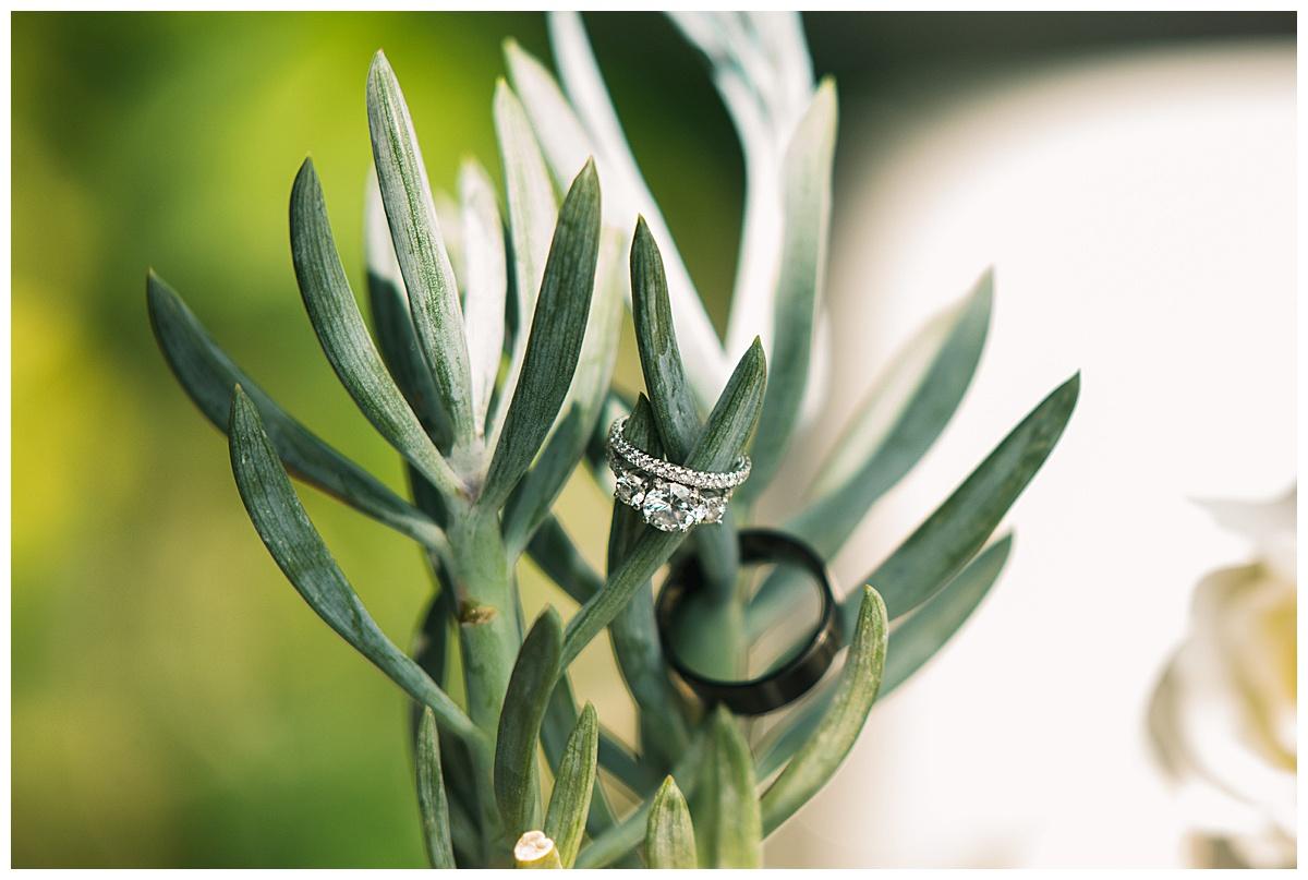 Portofino-Redondo-Beach-Wedding-Photographer-Carissa-Woo-Photography_0003.jpg