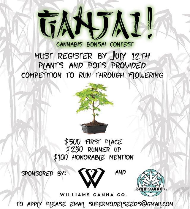#CannabisCommunity #GrowOregon #Bonsai