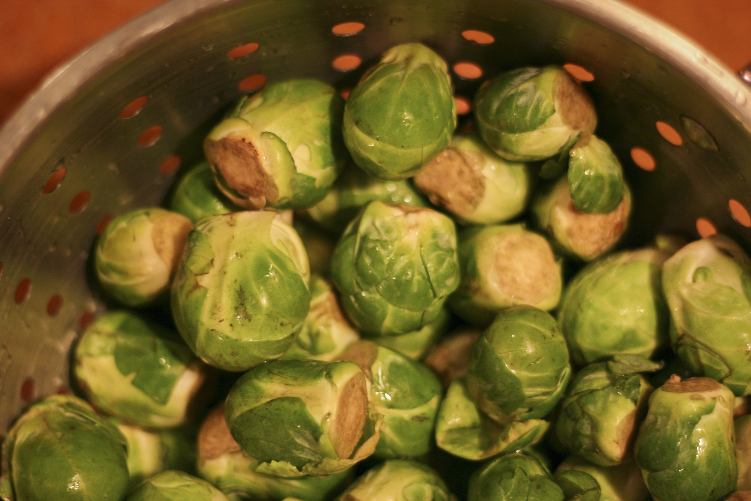 sprouts4.jpg