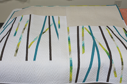 Wisconsin Museum of Quilts & Fiber Arts : Fresh Lemons Quilts