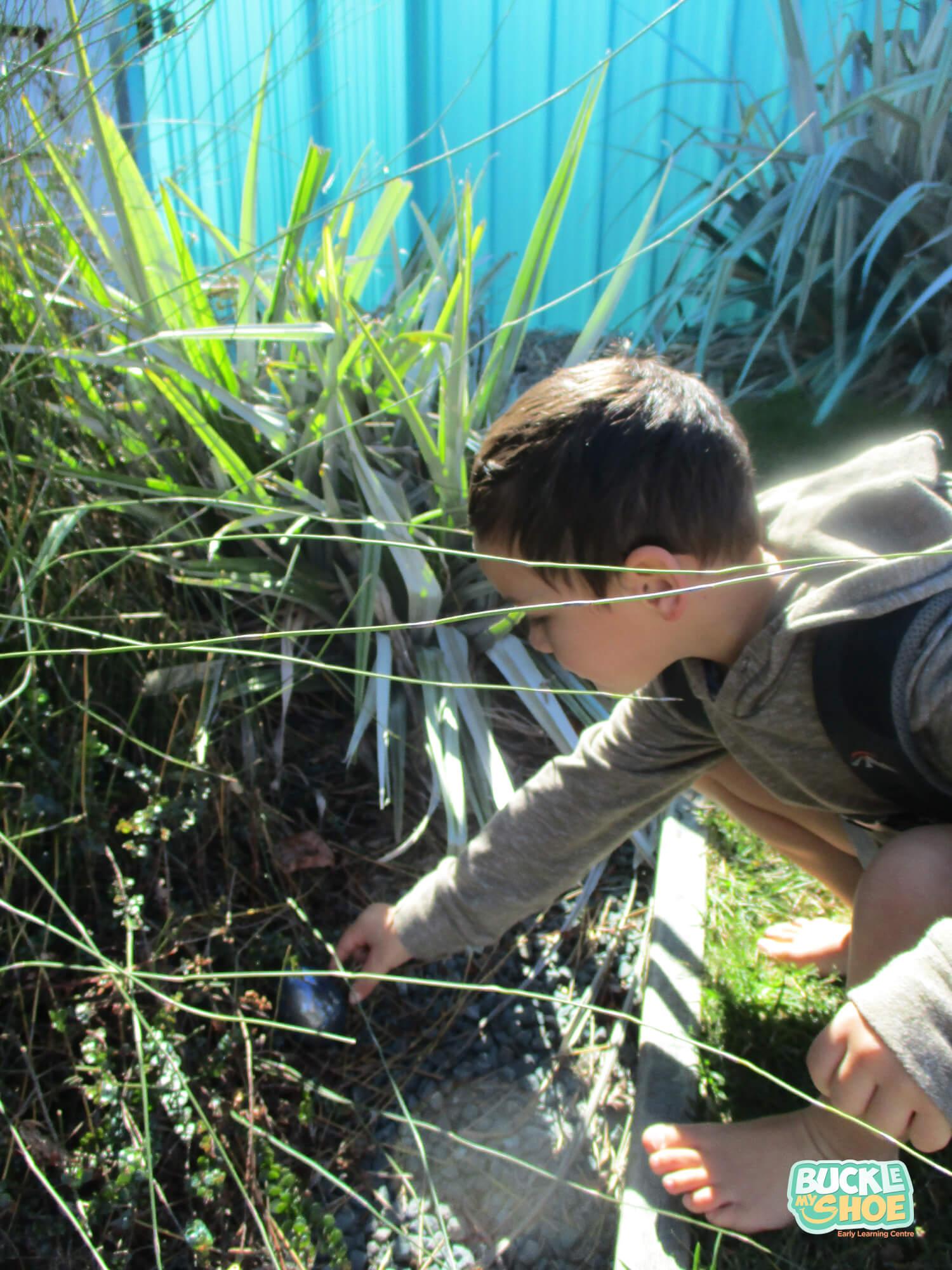 buckle-my-shoe-childcare-tauranga-easter-egg-hunt.jpg