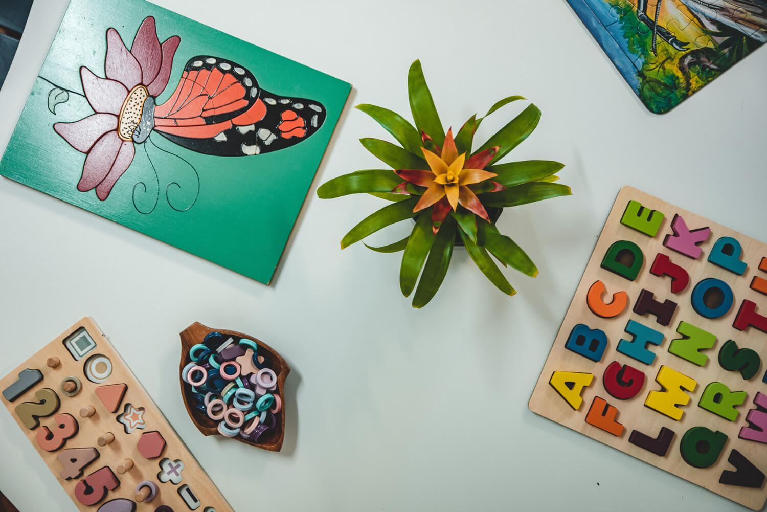 early-childhood-centres-tauranga-reach-for-the-stars
