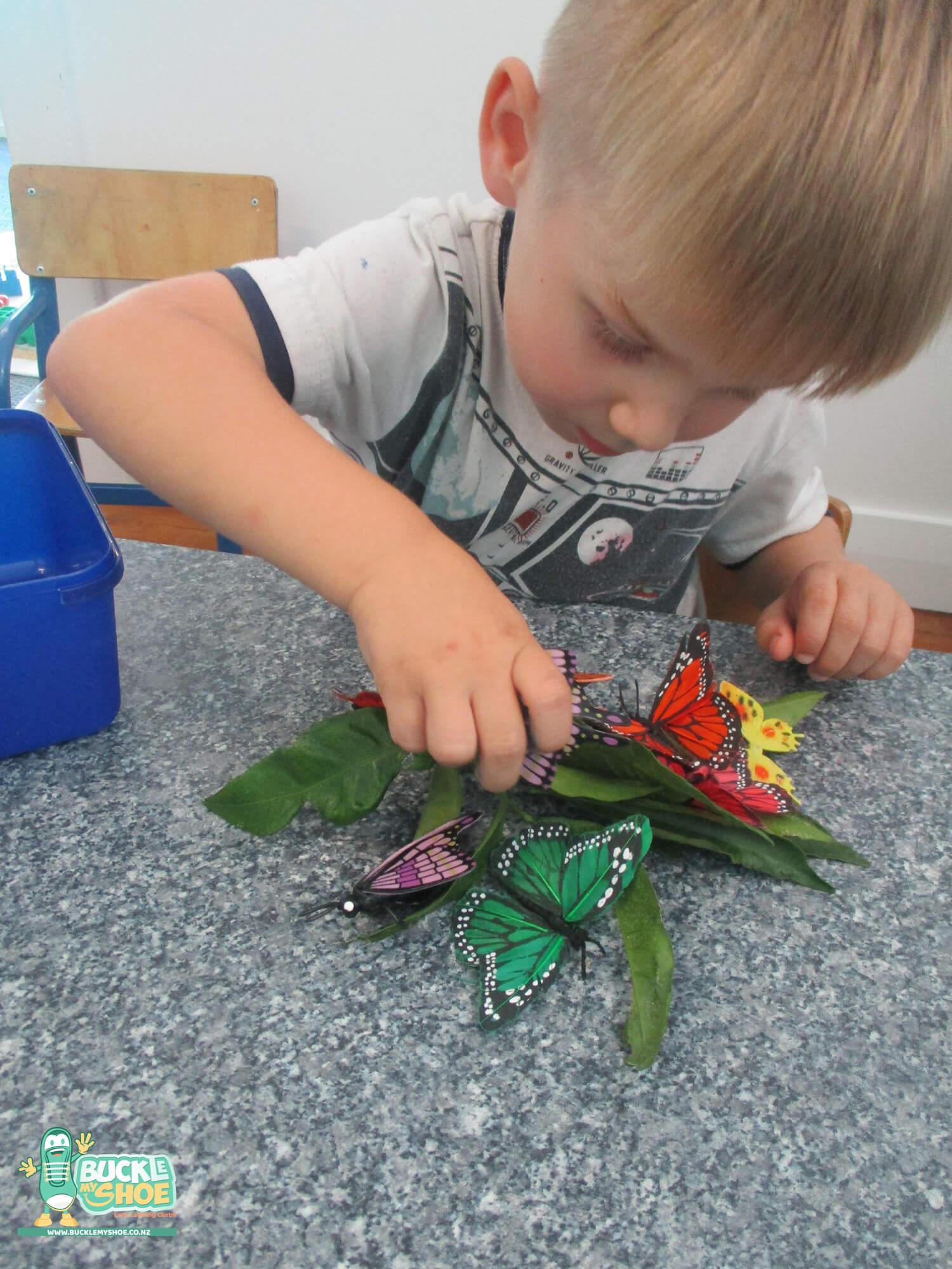 buckle-my-shoe-childcare-tauranga-butterfly-6.jpg