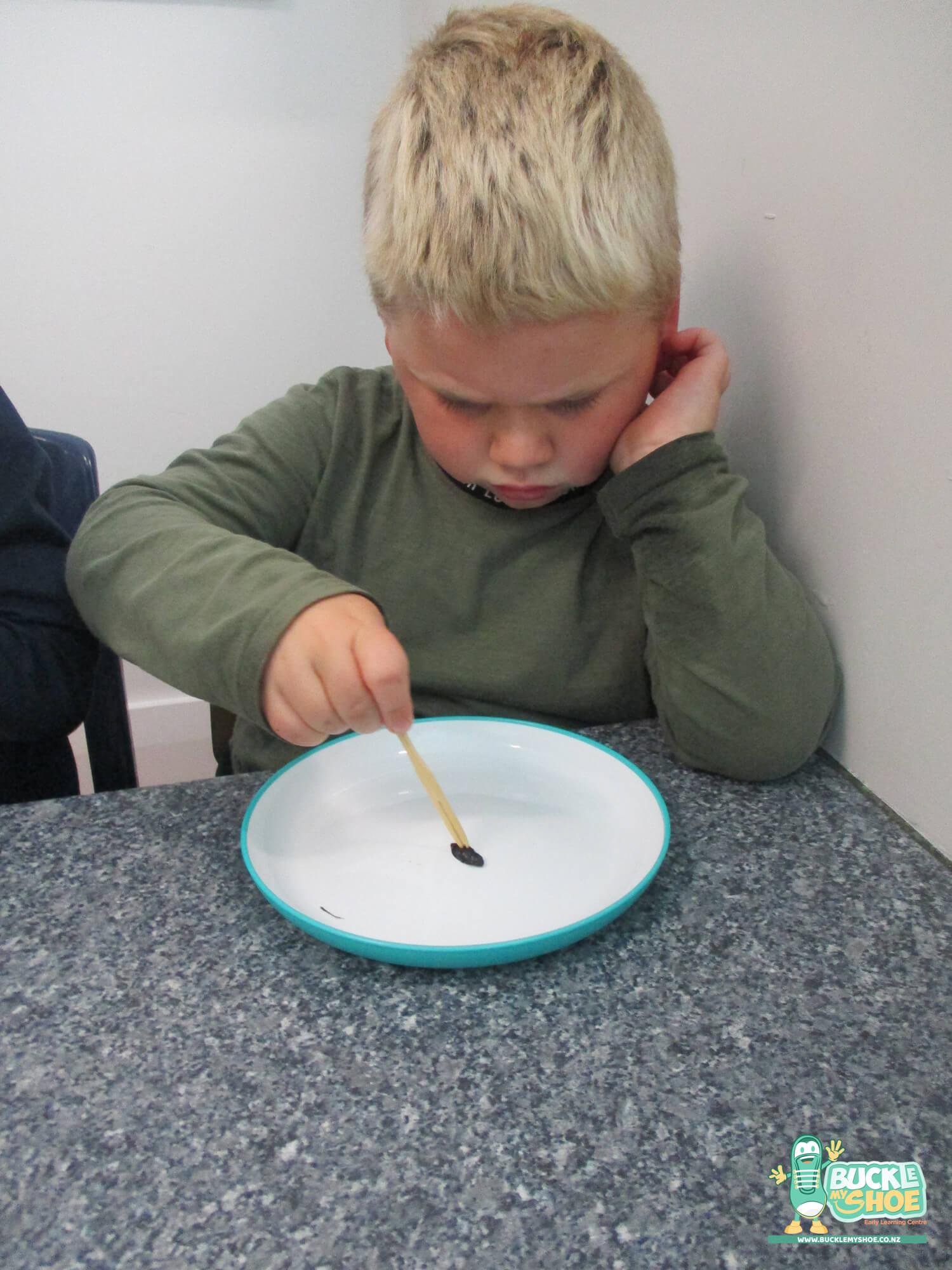 buckle-my-shoe-childcare-tauranga-butterfly-pt2-13.jpg