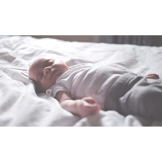 The natural light was 😍 {swipe for cute newborn breathing!} - - - You can see the full newborn family film at bebefilms.com, or on IGTV - - - #newbornphotography #newbornfilm #newbornvideo #familyfilm #yyjmom #2019mom #minervamoms #victoriamom