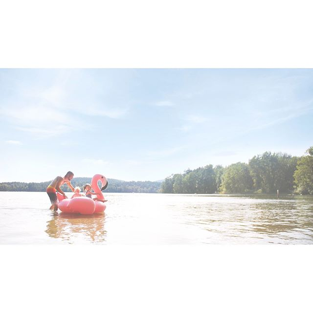 {swipe for video} I posted on FB that I was super stoked for the giant pink flamingo. It didn't disappoint! Plus, the cuteness overload of the babes! Come on! #elklake #pnw #pnwwonderland #yyjfamilies #victoriavacation #victoriabc #hamsterlybeach