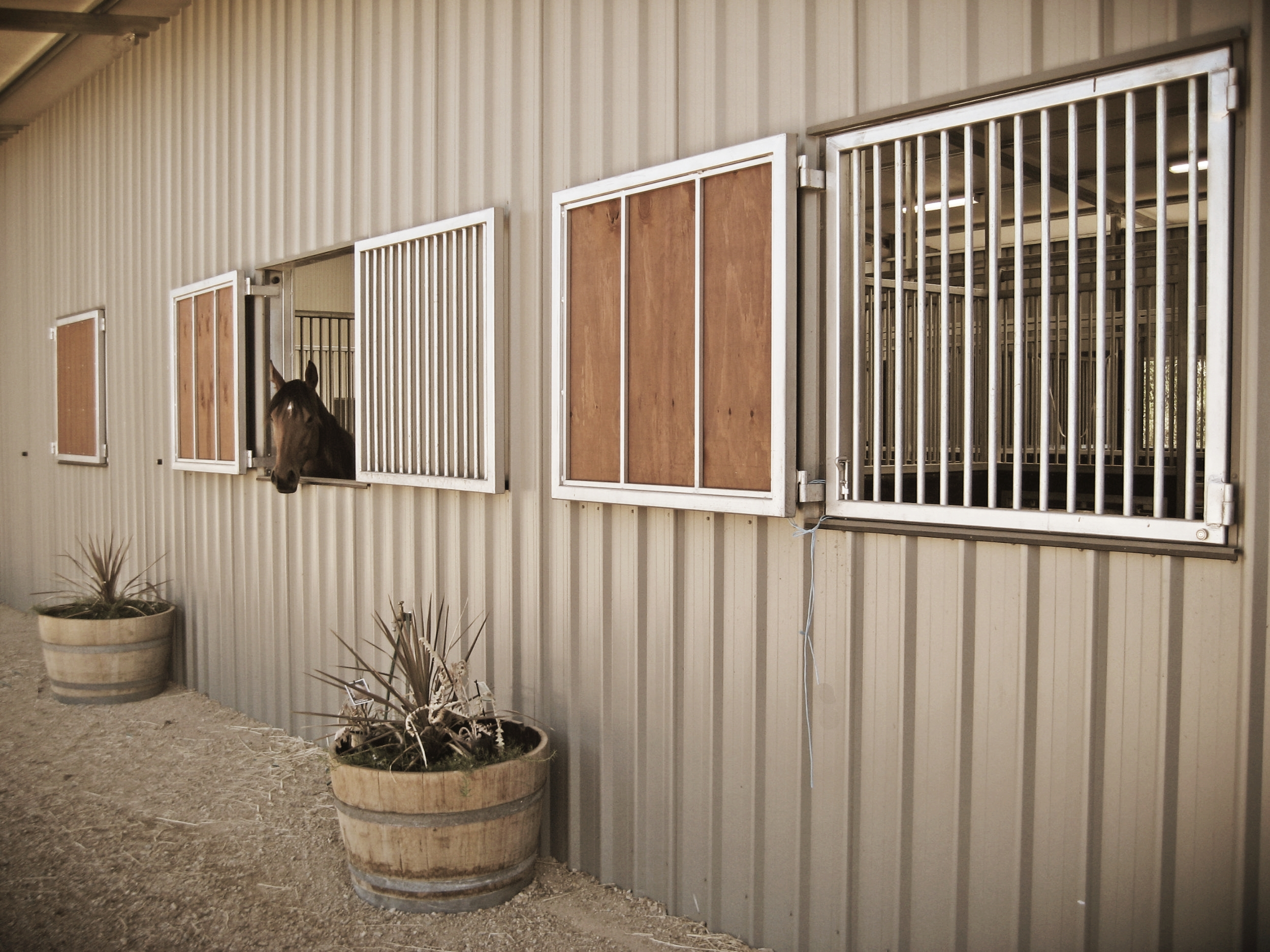 Keysborough Equine Rehabilitation and Agistment Centre