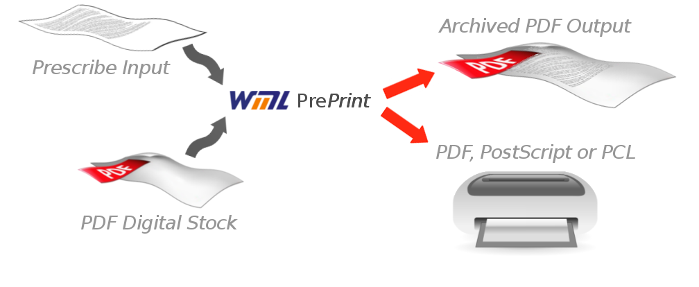 preprint_diagram.png