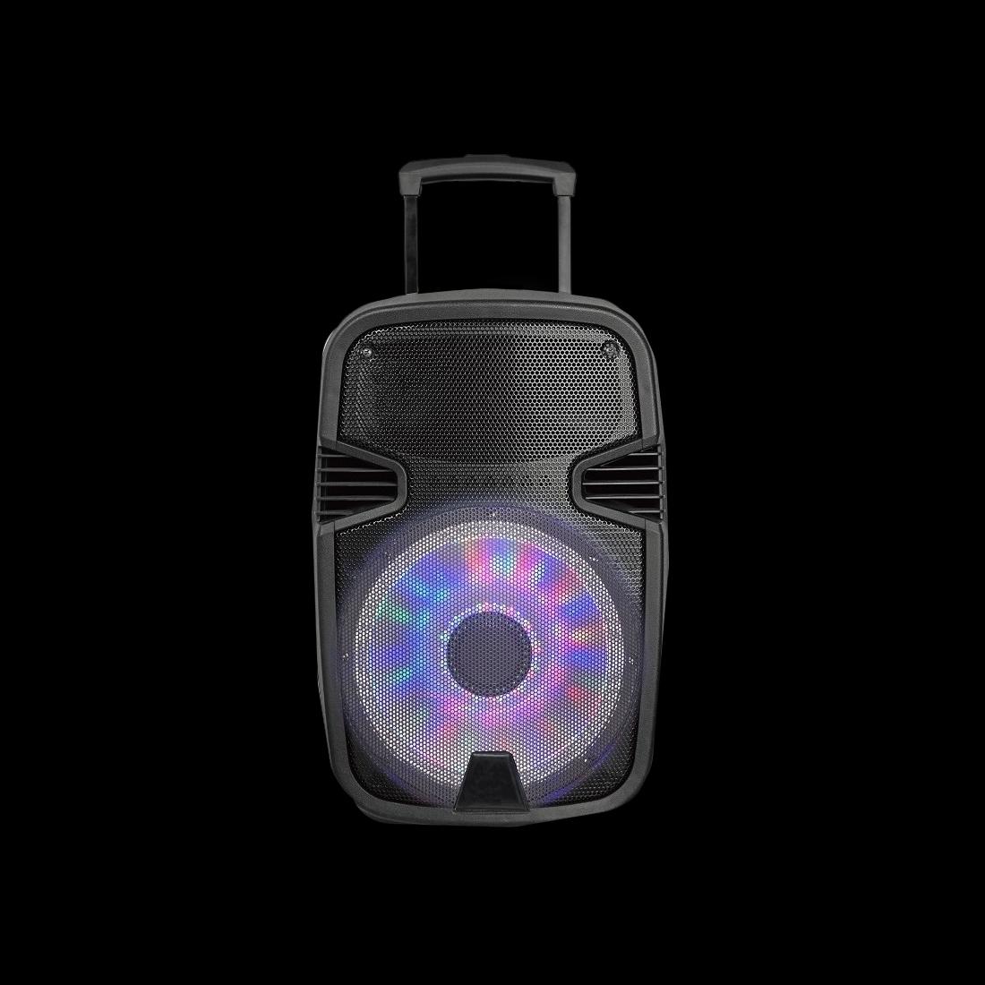 "Sakkyo NPL2213 - Altavoces amplificados de 12"" con micros inalámbricos para trabajar a nivel profesional."