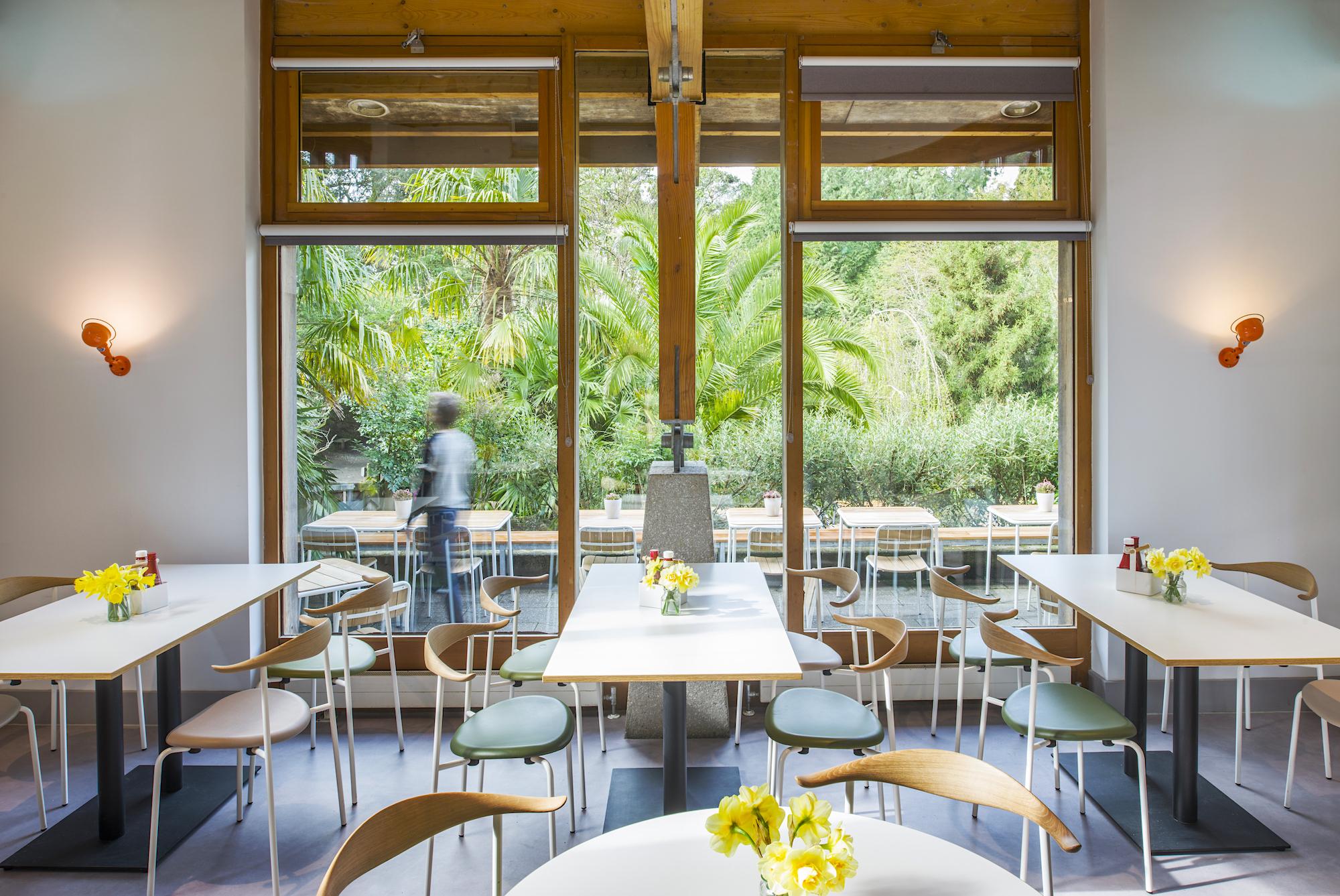 eleanor-bell-restaurant-lighting-trebah-cafe-led-lighting.jpeg