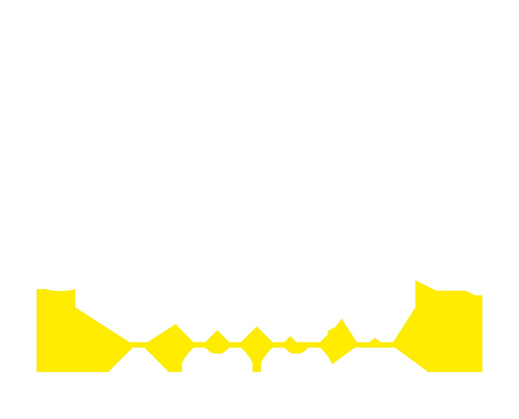 SSY-logo-white-yellow.png