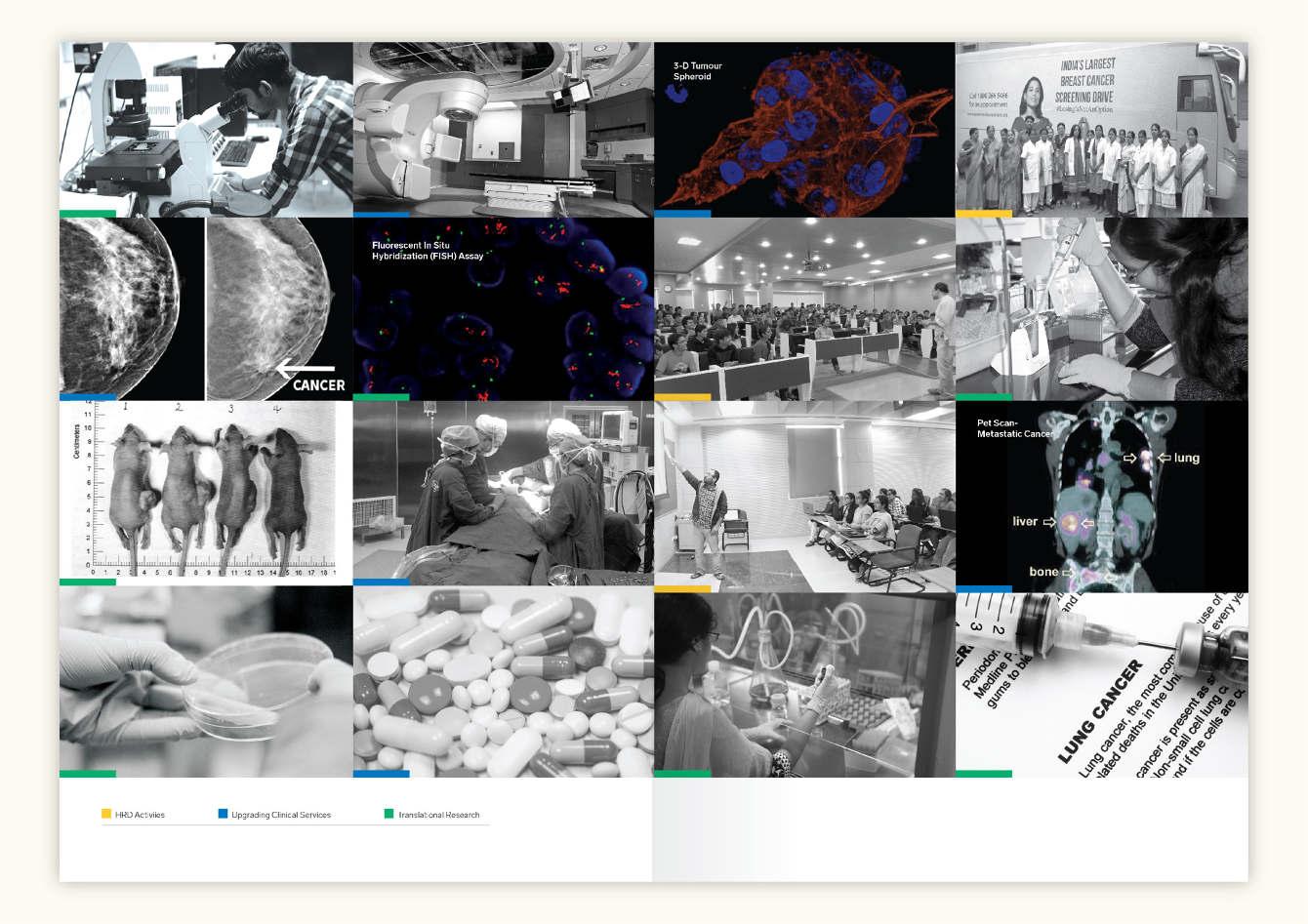 Translational-Cancer-Centre-Brochure-09_1340_c.jpg