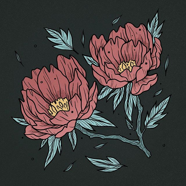 And with some color. . . . #peony #peonies #peonybouquet #plantsillustration #plantlove #plantlover #crazyplantlady #crazyplantpeople #plantsofinstagram #spring #springtime #illustratorsoninstagram #illustration_daily #illustrationoftheday #illustrationhowl #womenofillustration #illustrationdaily #illustrationnow #ilustracja