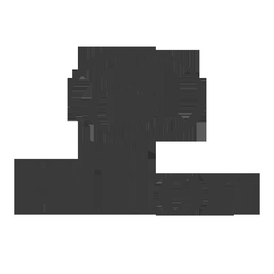 hilton copy.png