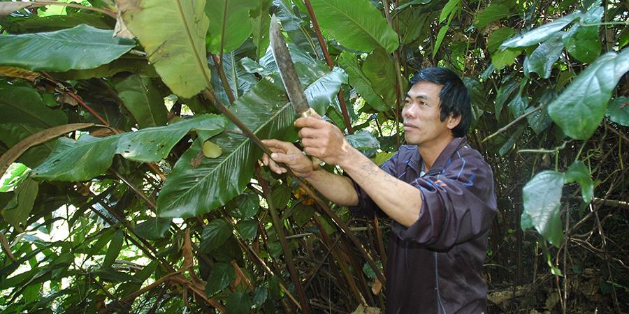 Fair   Trade guidance