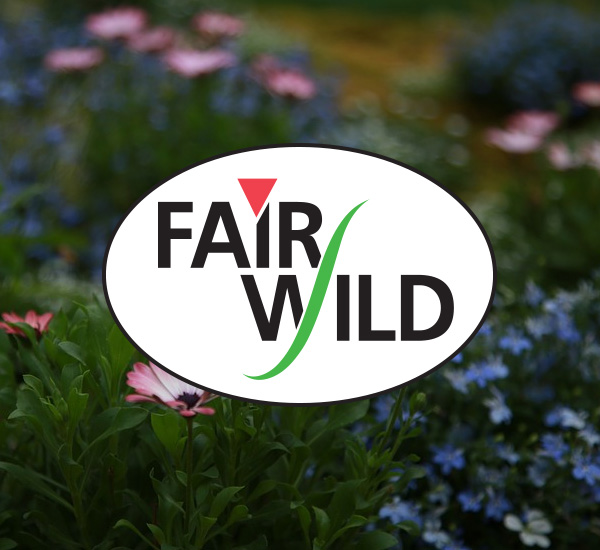 Brand manufacturers - Finished product brand holders, (companies responsible for the labelling and marketing of the final packaged products), can register with us as FairWild Licensees. You'll be able to use the FAIRWILD® word or design mark to reassure your customers that your products contain responsibly and sustainably sourced wild ingredients. A licensee fee is charged annually based on a percentage of product sales.Read the FairWild Trading rules and Labelling Rules and complete a registration form to get started.
