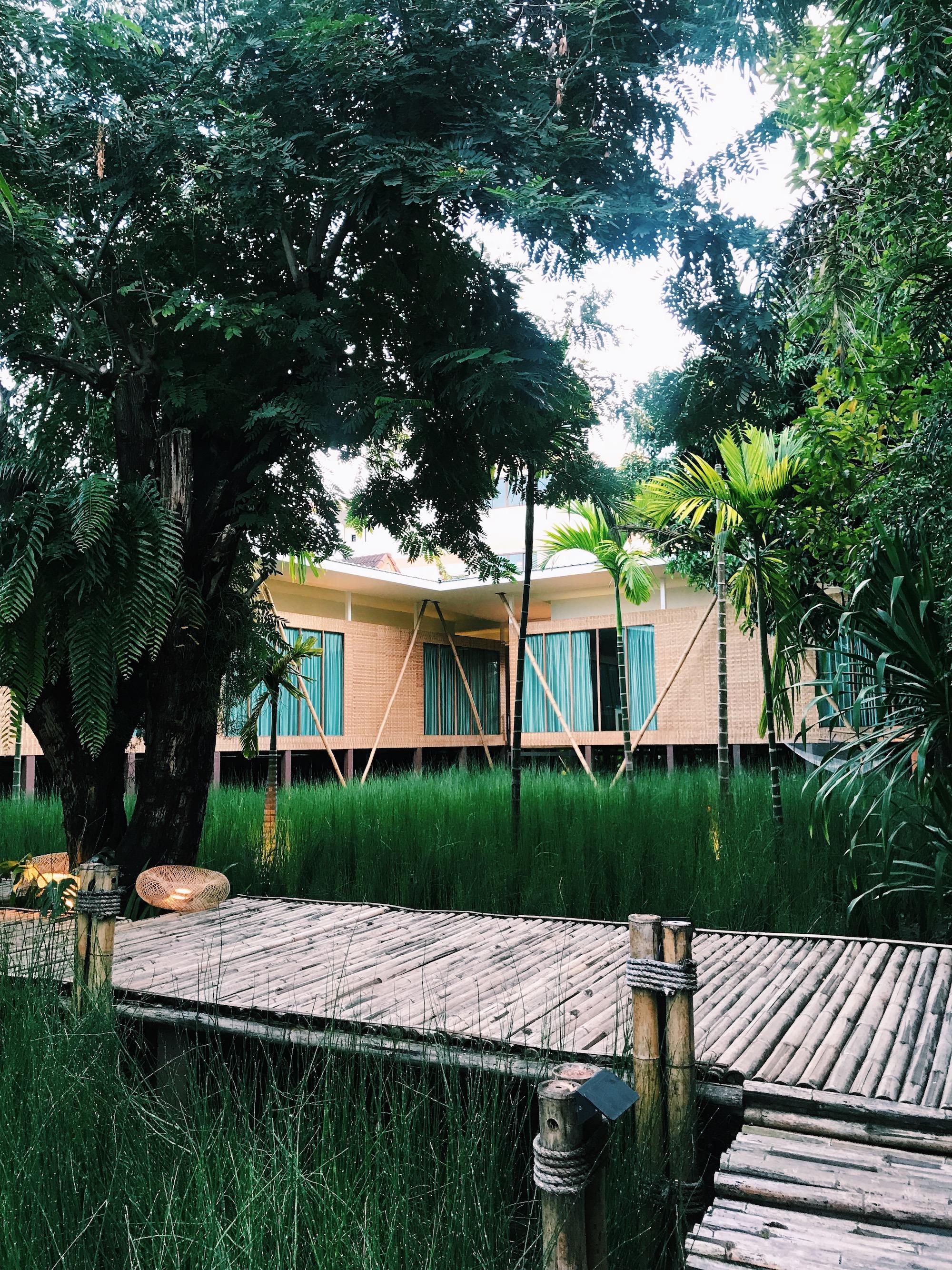 Chiang Mai Thailand Travel Guide - Claire Eliza - Sense Garden Massage.JPG