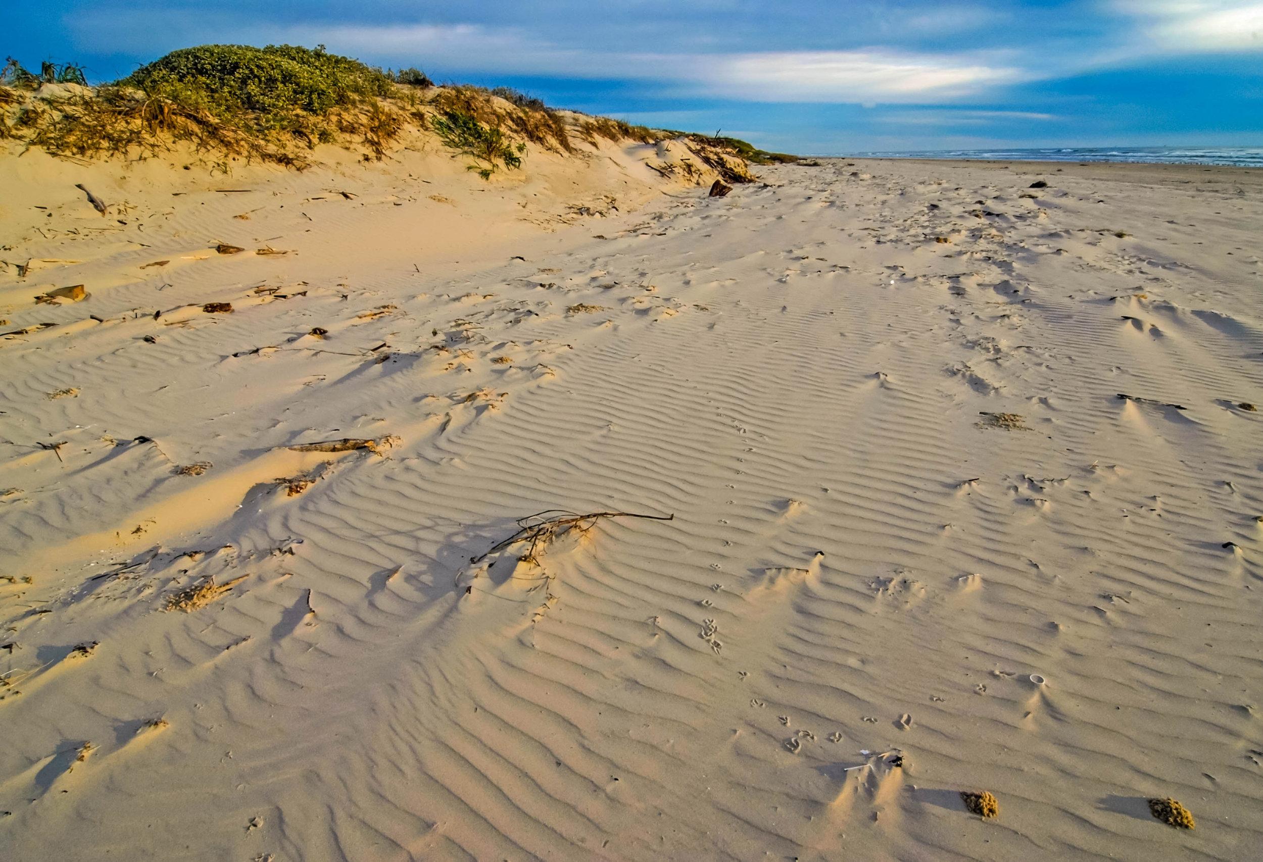 iStock-Seaside Sandunes - Gulf Coast490108264.jpg
