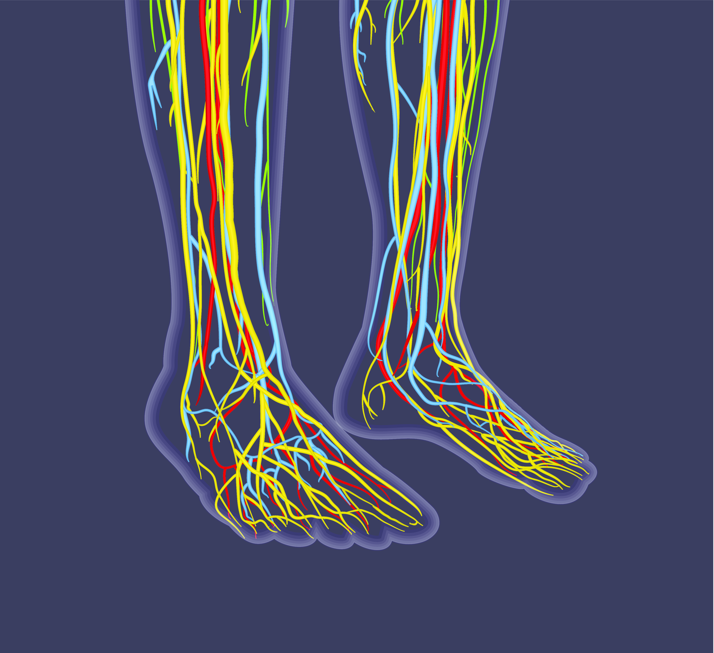 peripheral arterial disease exam by florida podiatrist