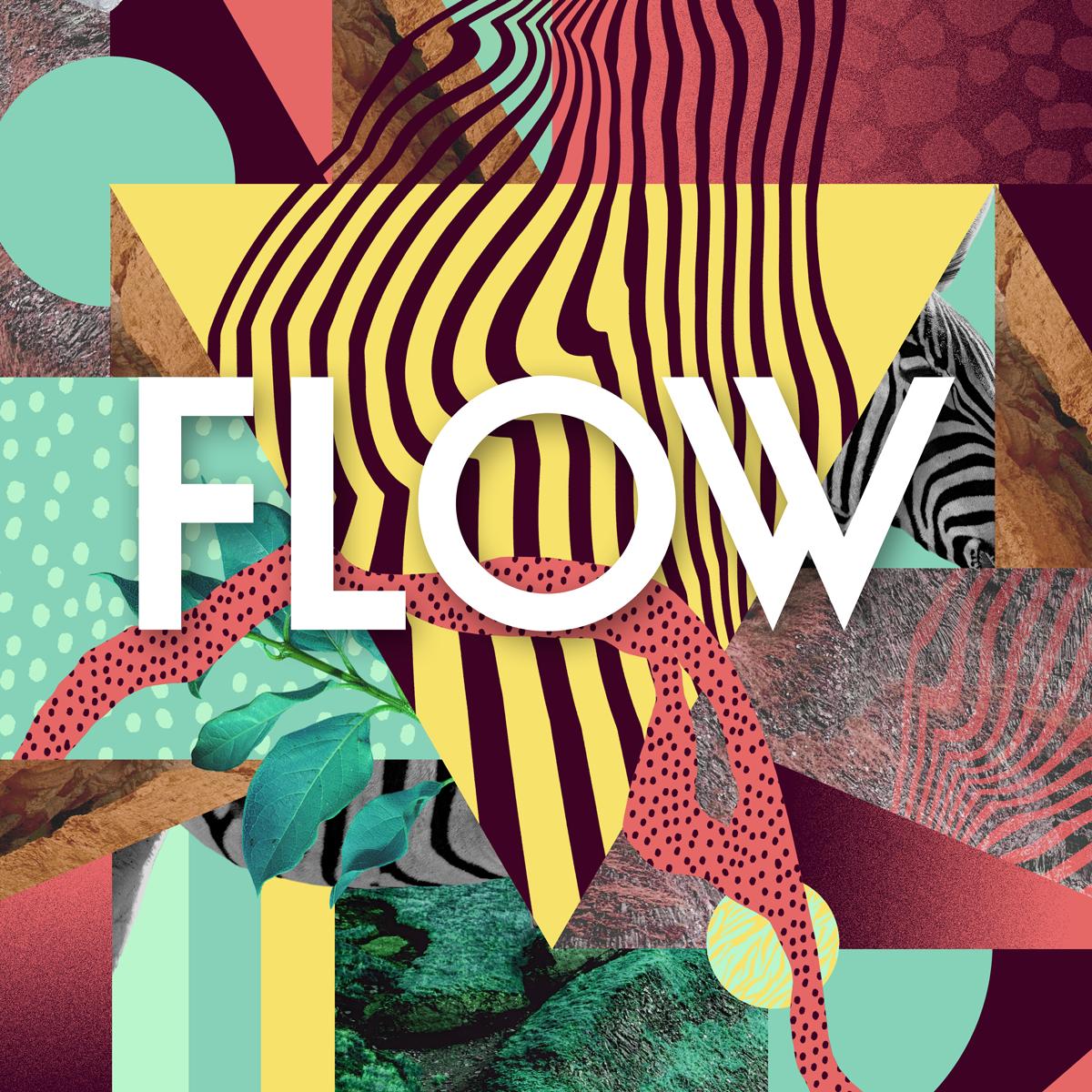 flow_avatar.png