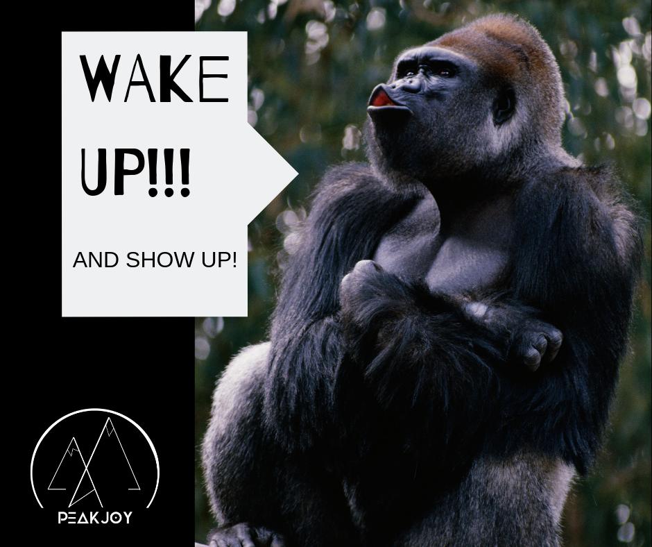 WAKE UP!!!.png