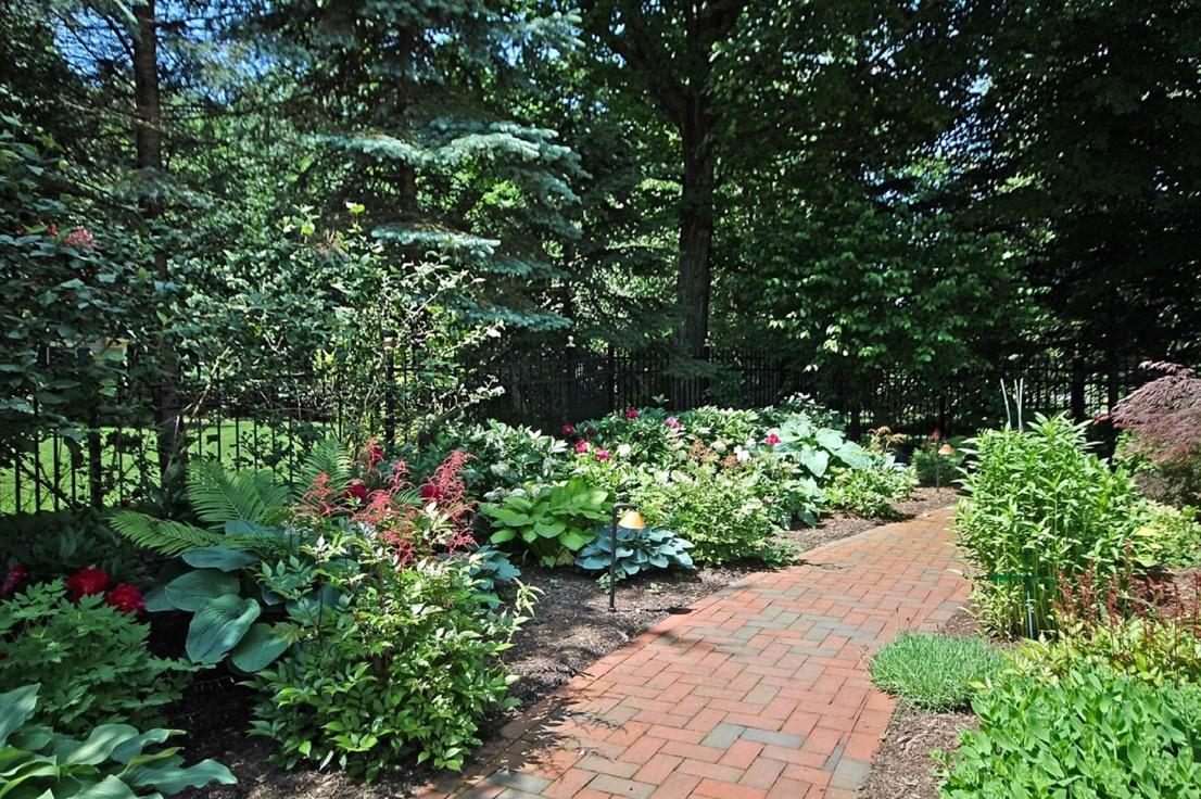 garden1_edit.jpg