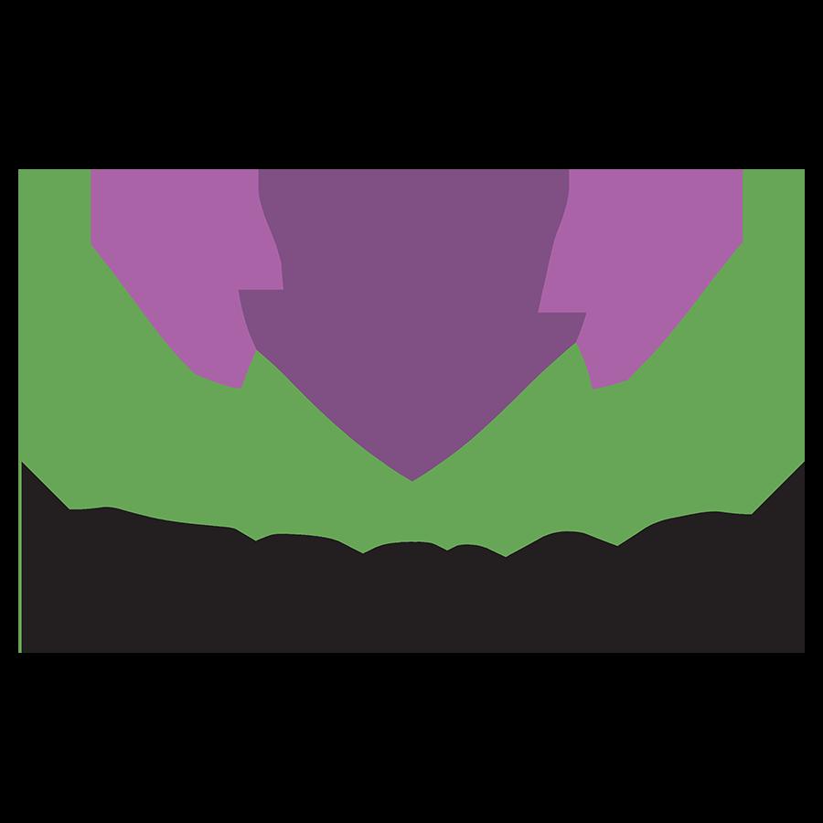 Toivo_Logo.png