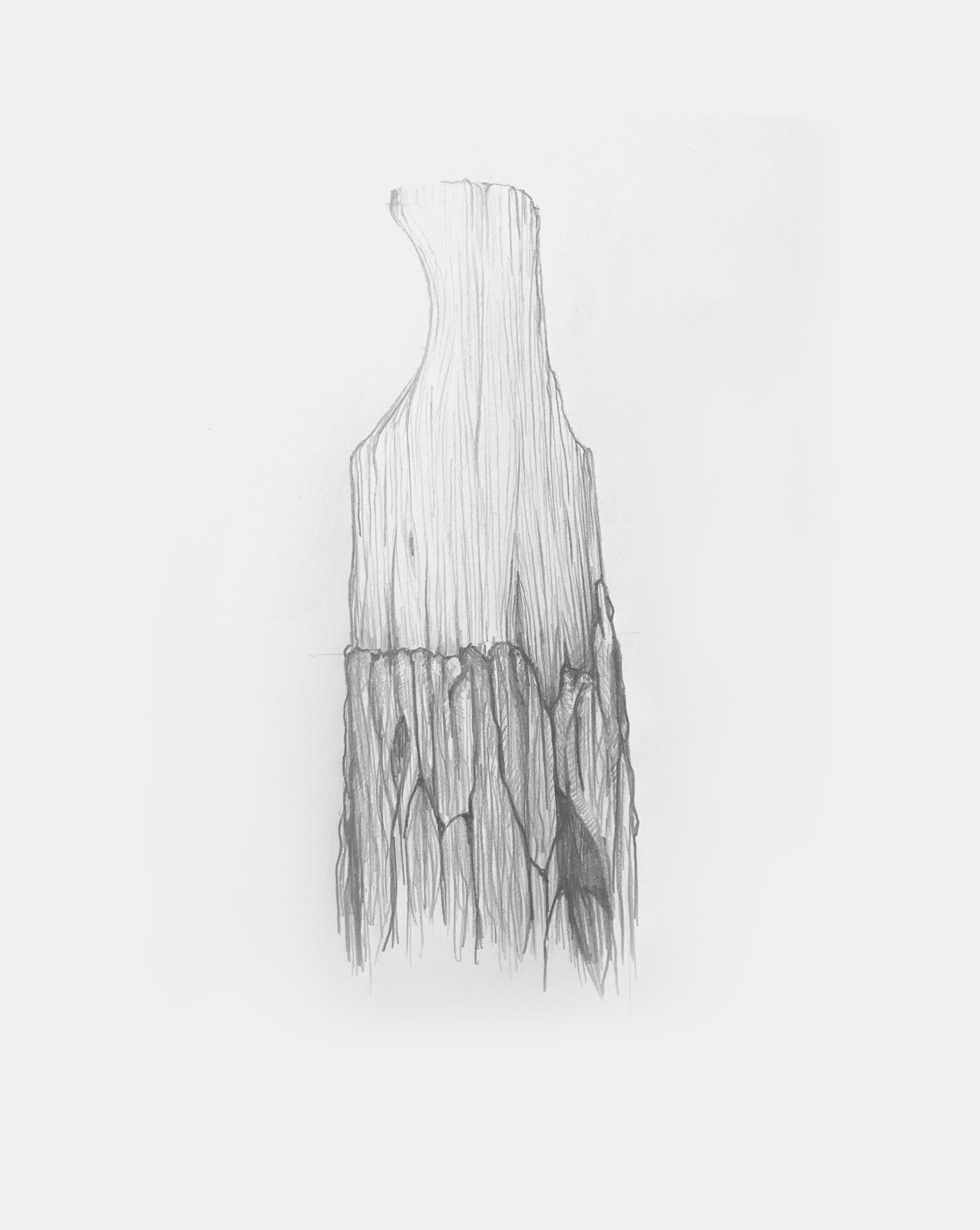 mathieu delacroix_tasso_vases_drawing