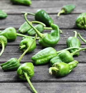 pardon peppers.jpg