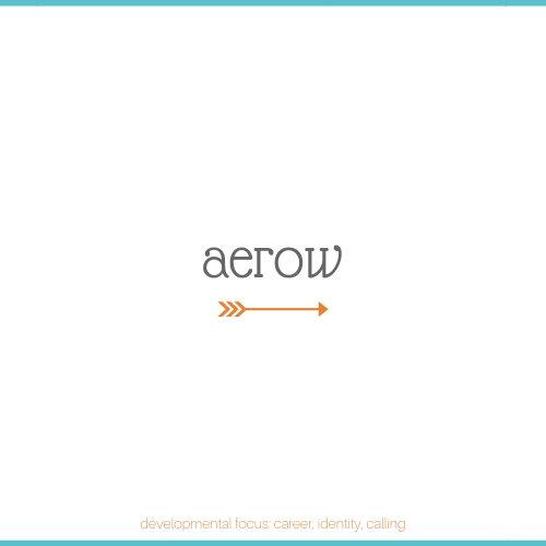aerow 2.jpg