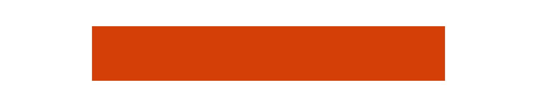 logo_bn.png