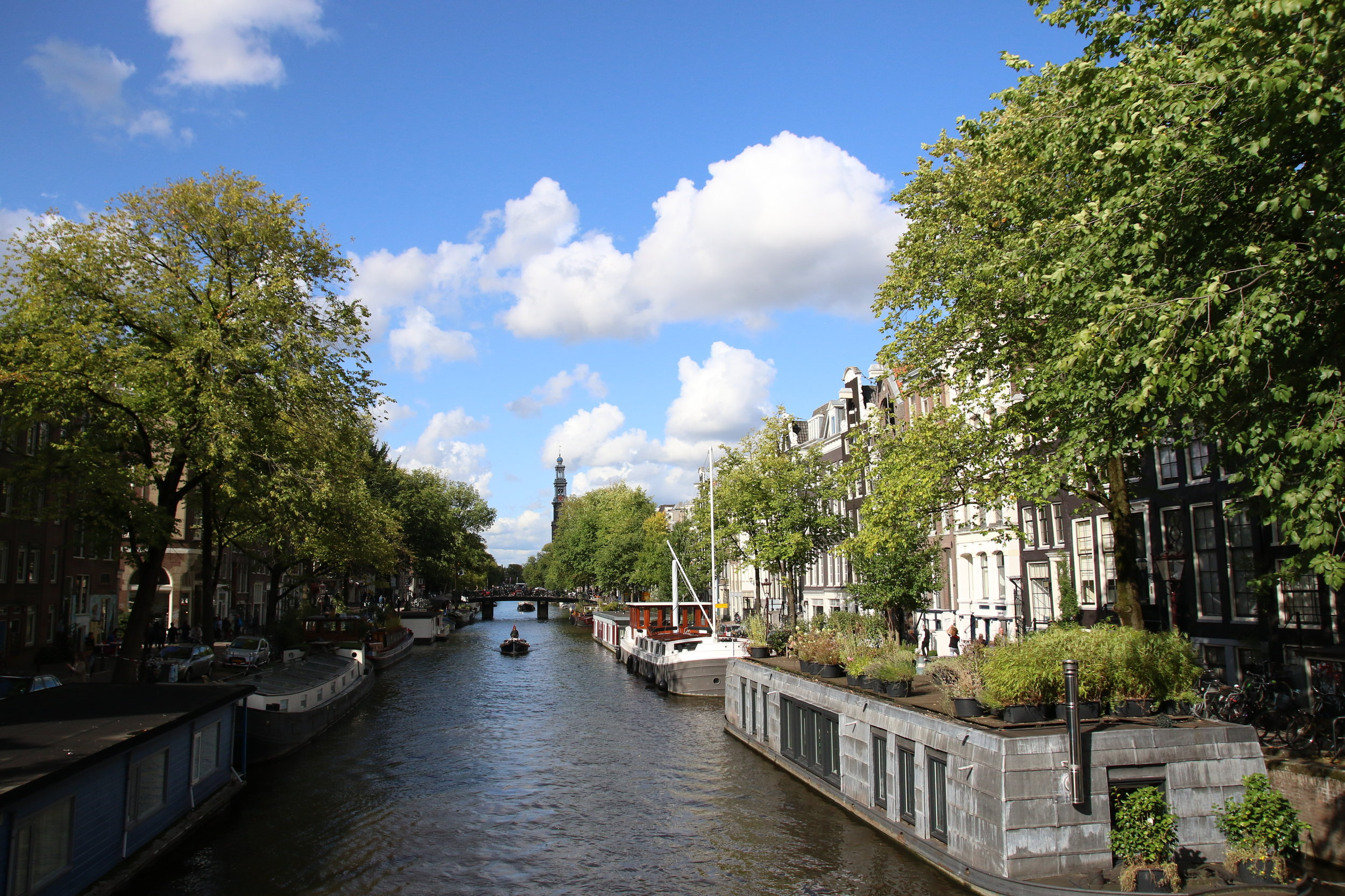 amsterdam canals .jpg